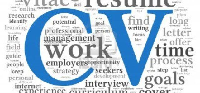 Príprava na pracovné pohovory, konzultácia životopisov